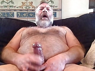 bear (gay) big cock (gay) daddy (gay)